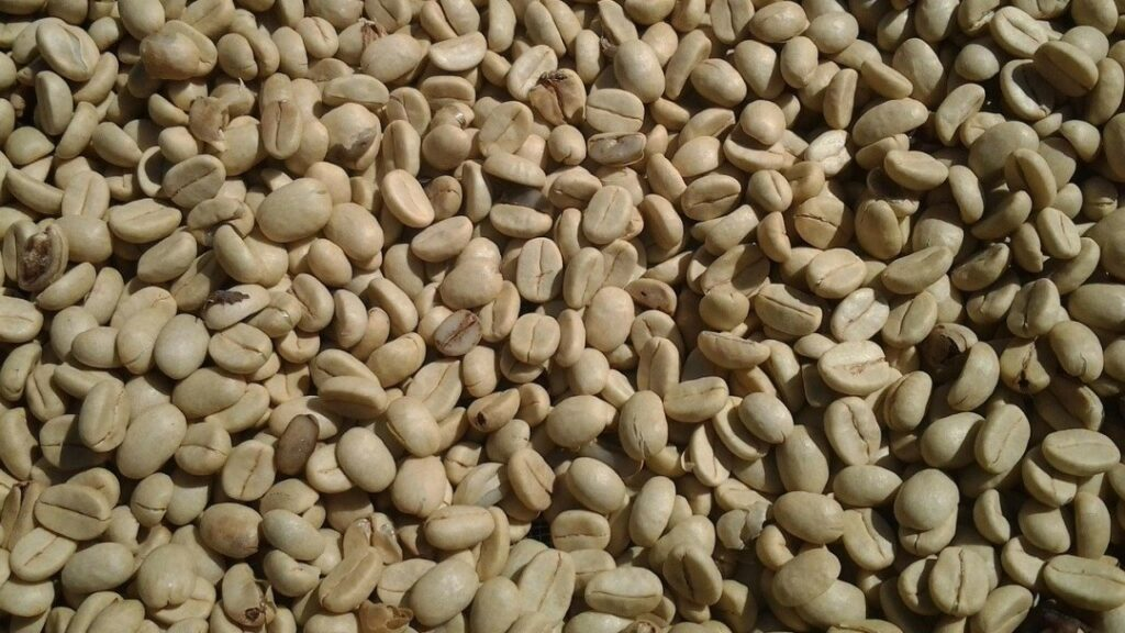 best coffee roasters for small business